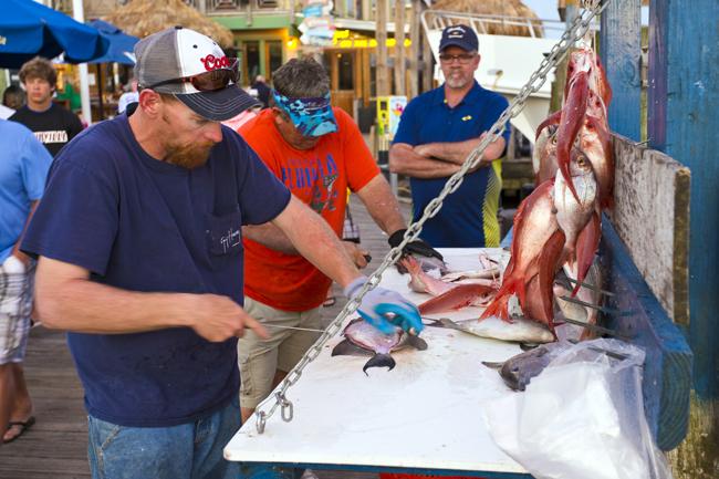 deep sea fishing in destin, florida