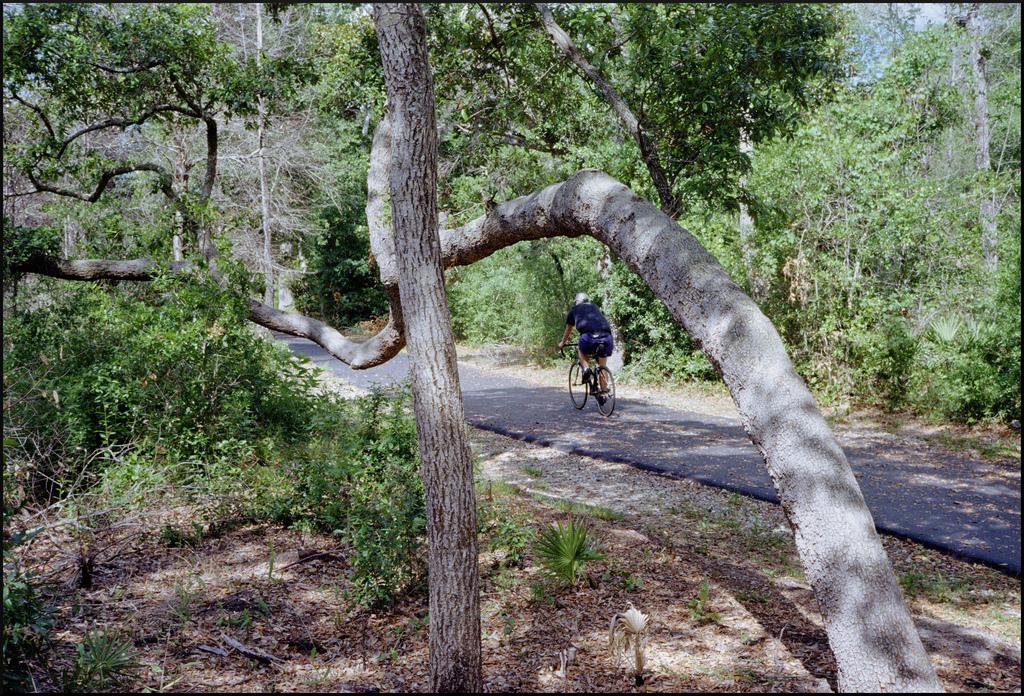 orange beach alabama hiking trails