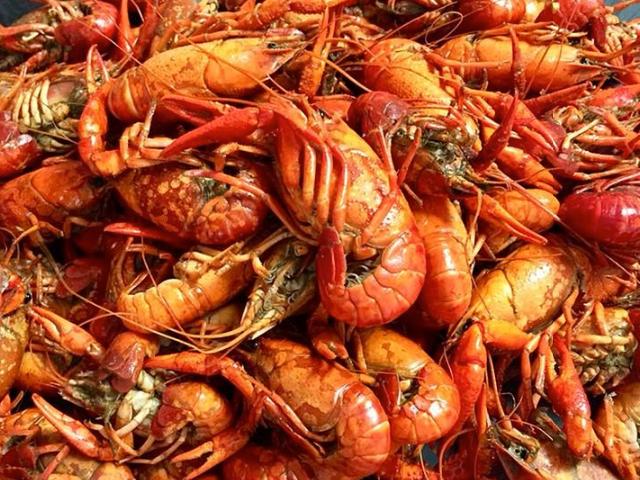 gulf shores crawfish festival