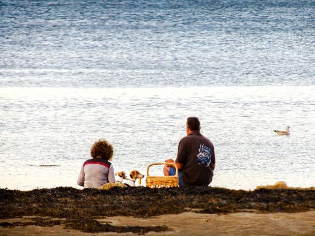 beach picnic gulf shores